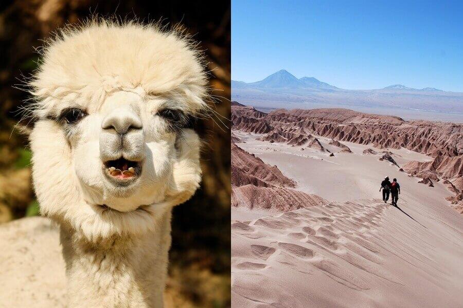 De ideale landencombinatie Peru, Chili en Bolivia
