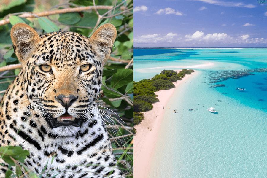 Sri Lanka en de Malediven, de ideale combinatie van  natuur, cultuur en strand