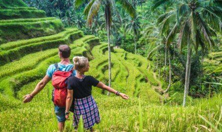 De mooiste rijstvelden nabij Ubud