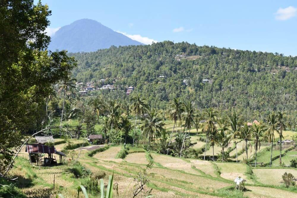 Het heuvelachtige landschap van Munduk