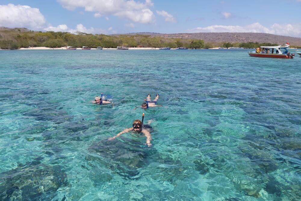 Snorkelen bij het onbewoonde eiland Menjangan Island, vlakbij Petumeran, is een must do!