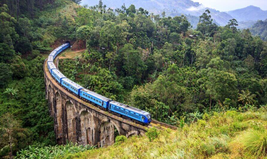 De mooiste plekjes van Sri Lanka in 20 dagen