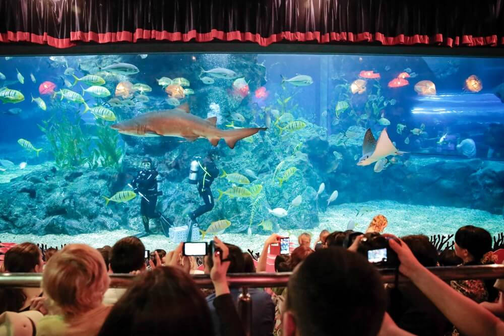 Thailand Bangkok Sea Life
